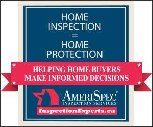 meriSpec Inspection Service
